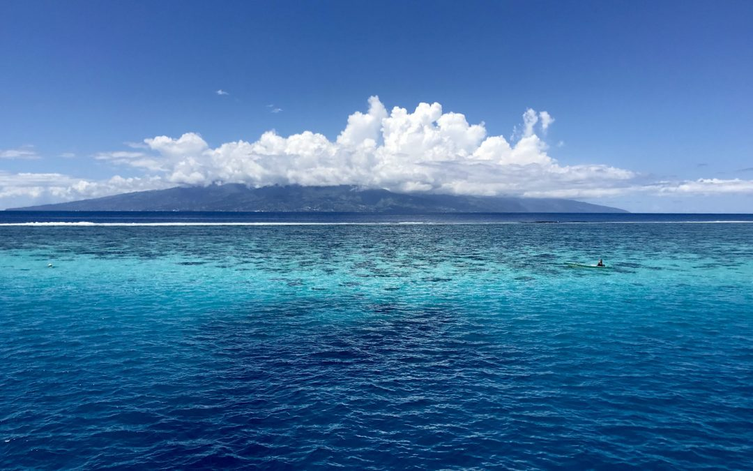 Moorea- At the reef (gr)